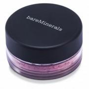 i.d. BareMinerals Blush - Secret 0.85g/0.03oz i.d. Fard de Obraz Bareminerals - Mister