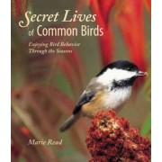 Secret Lives of Common Birds by Marie Read
