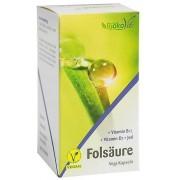 BjökoVit Acido Folico - 60 capsule