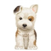 Little Puppy by Giovanni Caviezel