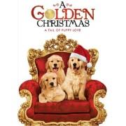 Golden Christmas [Reino Unido] [DVD]
