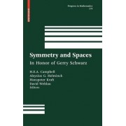 Symmetry and Spaces by H. E. A. Eddy Campbell