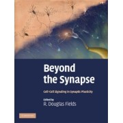 Beyond the Synapse by R. Douglas Fields