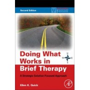 Doing What Works in Brief Therapy by Ellen K. Quick