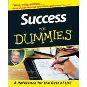Ziglar Success For Dummies
