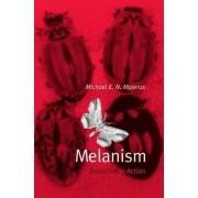 Melanism by Michael Majerus