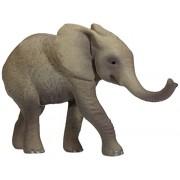 Ravensburger tiptoi: African Elephant Collectible figure - figuras de acción y de colección (Collectible figure, Juego De Cartas, tiptoi: Africa, Gris)