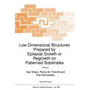Low Dimensional Structures Prepared by Epitaxial Growth or Regrowth on Patterned Substrates by Karl Eberl
