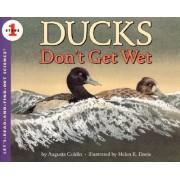 Ducks Don't Get Wet by Augusta Goldin