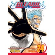 Bleach by Tite Kubo