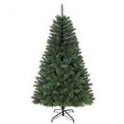 Norveška Jelka 305 cm Tree Classics