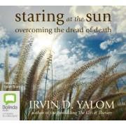 Staring At The Sun by Sean Mangan