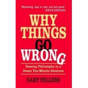 Why Things Go Wrong by Gary Fellers