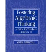 Fostering Algebraic Thinking by Mark Driscoll