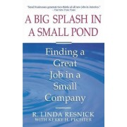 A Big Splash in a Small Pond: Finding a Great Job in a Small Company by Linda Resnick