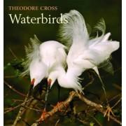 Waterbirds by Theodore Cross