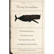 Trying Leviathan by D. Graham Burnett