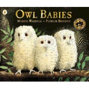 Owl Babies by Martin Waddell