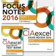 Wiley CIAexcel Exam Review + Test Bank + Focus Notes 2016: Internal Audit Basics Set Part 1 by S. Rao Vallabhaneni