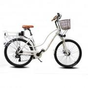 "DME-Bike Bici elettrica da passeggio 26"" Bicicletta pedalata assistita Olandese DME bike"
