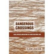 Dangerous Crossings by Claire Jean Kim