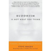 Buddhism is Not What You Think by Steve Hagen