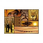 Educa Afrika színei puzzle, 1000 darabos