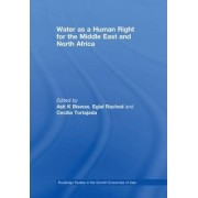 Water as a Human Right for the Middle East and North Africa by Asit K. Biswas