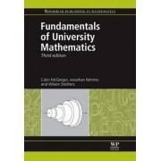 Fundamentals of University Mathematics by Colin M. McGregor