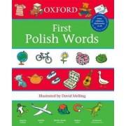 Oxford Polish Words by David Melling