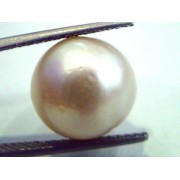 Huge 13.05 Carat Natural Certified Real South Sea Pearl,Certified Moti