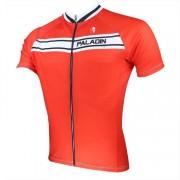Maillot Ciclista Corto Paladin 2015