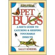 Pet Bugs by Sally Kneidel