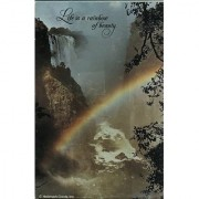 Springbok Mini Puzzle - Life Is A Rainbow Of Beauty - Over 100 Pieces - Pzl4710