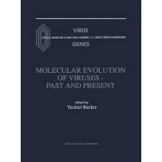Molecular Evolution of Viruses by Yechiel Becker