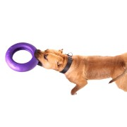 Puller dog fitness tool Maxi