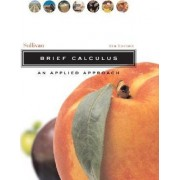 Brief Calculus by Michael Sullivan