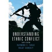 Understanding Ethnic Conflict by Raymond C. Taras