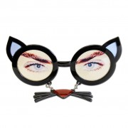 Black Cat Glasses With Whiskers