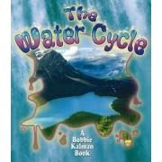 The Water Cycle by Bobbie Kalman