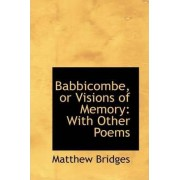 Babbicombe, or Visions of Memory by Matthew Bridges