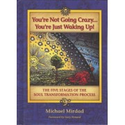 You're Not Going Crazy... You're Just Waking Up!: The Five Stages of the Soul Transformation Process, Hardcover