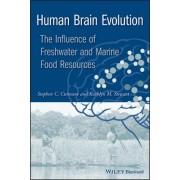 Human Brain Evolution by Stephen C. Cunnane