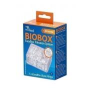 GLASS RINGS BIOBOX XS