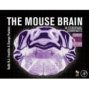 The Mouse Brain in Stereotaxic Coordinates, Compact by George Paxinos