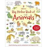 Big Sticker Book of Animals by Sam Taplin