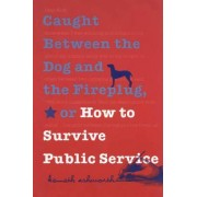 Caught Between the Dog and the Fireplug, or How to Survive Public Service by Kenneth Ashworth