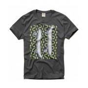 Camiseta - Hollister - Chumbo - Skate