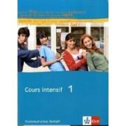 Cours intensif Neu 1. Grammatisches Beiheft by Dieter Kunert