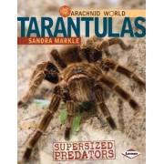Tarantulas by Sandra Markle